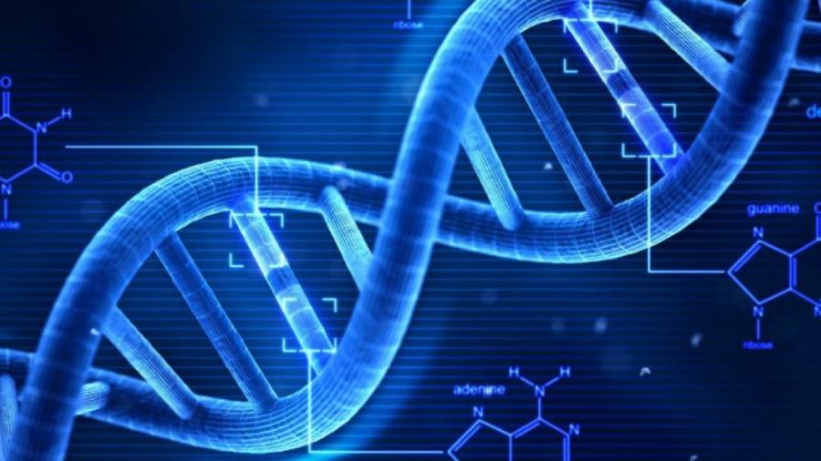 bambini-geneticamente-modificati-dna
