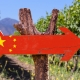 China flag wooden sign with winery background