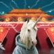 unicorns in china 2018