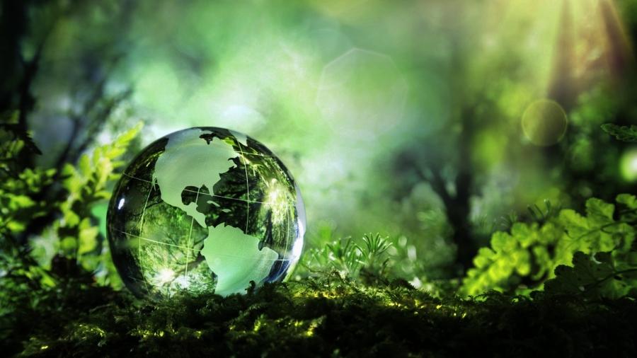 green-economy-italia